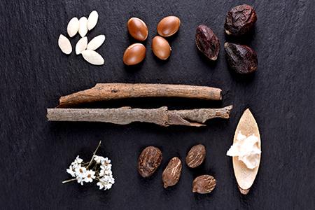 Ingredientes TOP para nutrir e hidratar la piel